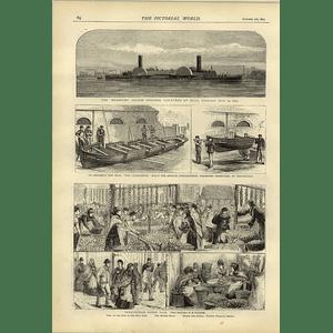 1874 Bessemer Saloon Steamer Hull Birmingham Onion Fair Stanley's New Boat