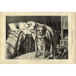 1874 Charming Artwork Dog Guarding Sleeping Baby Hw
