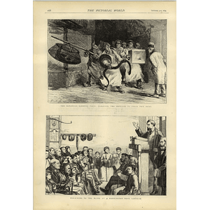 1874 Paris Botanical Gardens Rehousing Reptiles Blind Mission Hampton