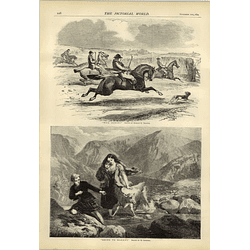 1874 Artwork Hablot K Browne Woa Horse Going To Market W Goodall Highlands