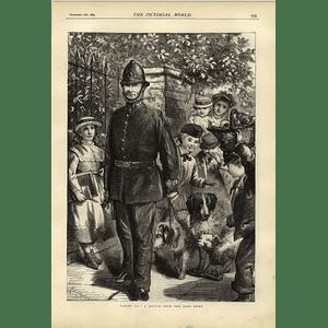 1874 In Police Custody Sketch Near Dogs Home