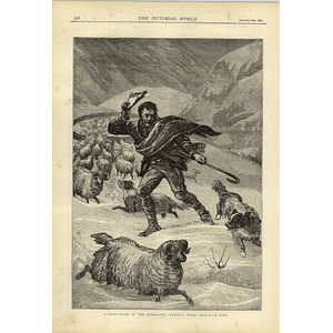1874 Snowstorm In The Highlands Herding Sheep Co Murray