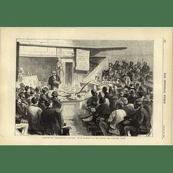 1874 Comparative Anatomy Lecture M Gervais Jardin Des Plantes Paris