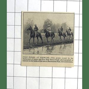 1936 Maharaja Of Jaipur Polo Ponies Exercised Badminton Park Gloucestershire