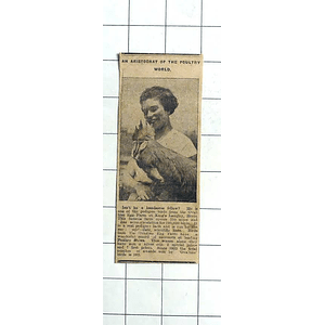 1938 Aristocrat Of The Poultry World, Ovaltine Egg Farm Kings Langley