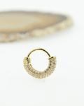 Clicker con múltiples zirconias de oro