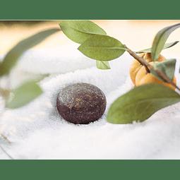Champô Sólido  – Cabelos Loiros