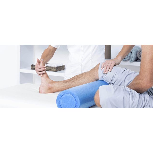 Fisioterapia / Physiotherapy