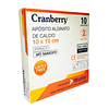 AAAACA10 – Apósito Alginato + Plata Cranberry – 10x10cm
