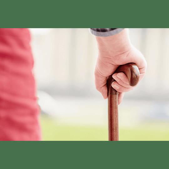 Bastón Ortopédico Ergonómico En Madera