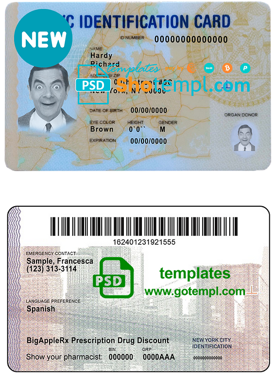 USA New York state ID template in PSD format, fully editable