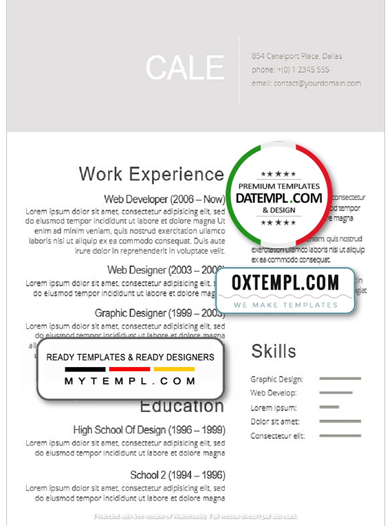 Professional High Quality Resume template in WORD format