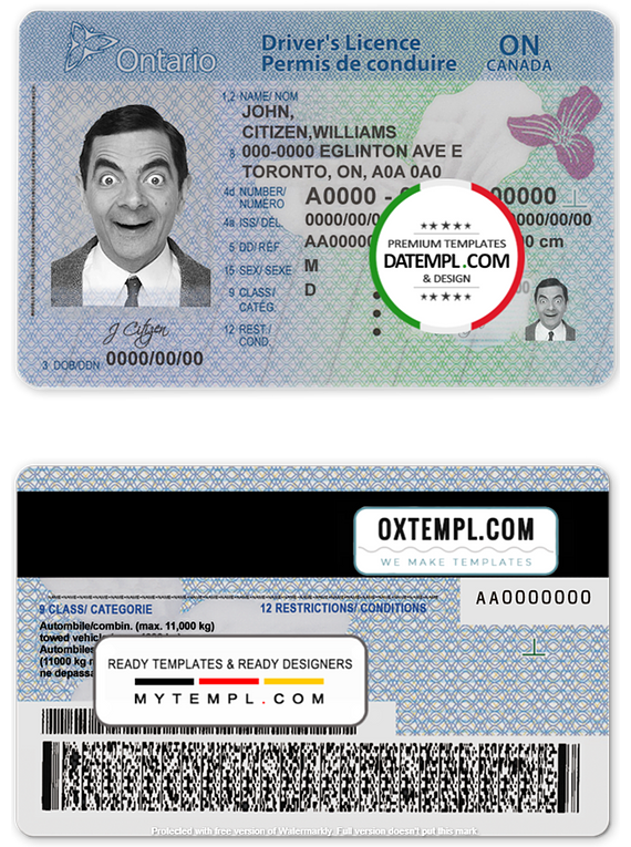 Canada Ontario driving license template in PSD format (2018 - present)