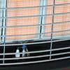 Turbocalefactor Infrarrojo GR-6200ET Rojo Rodante