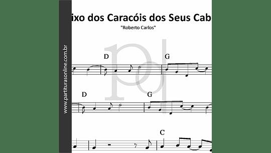 Debaixo dos Caracóis dos Seus Cabelos   Roberto Carlos