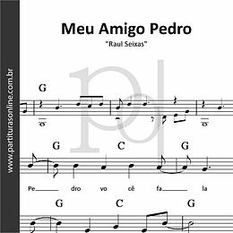 Meu Amigo Pedro | Raul Seixas