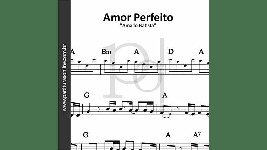Amor Perfeito | Amado Batista