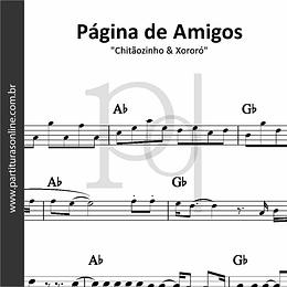 Página de Amigos | Chitãozinho & Xororó
