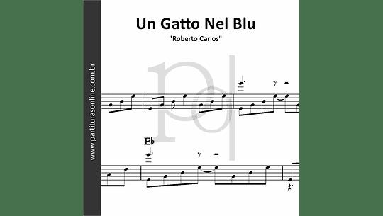 Un Gatto Nel Blu | Roberto Carlos