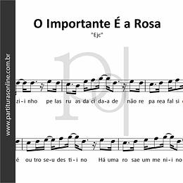 O Importante É a Rosa | Ejc