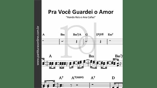 Pra Você Guardei o Amor | Nando Reis e Ana Cañas