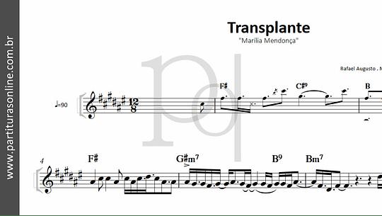 Transplante | Marília Mendonça