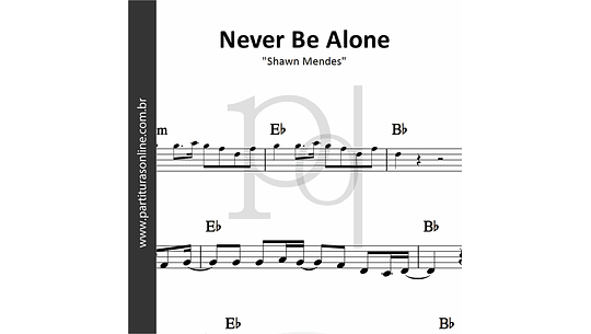 Never Be Alone | Shawn Mendes
