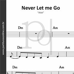 Never Let Me Go | Alok, Bruno Martini, Zeeba