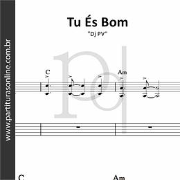 Tu És Bom | Dj PV