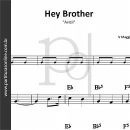 Hey Brother | Avicii