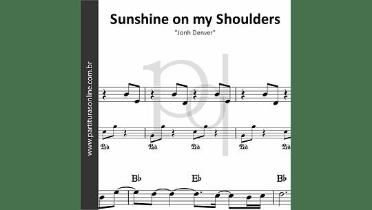 Sunshine on my Shoulders | Jonh Denver