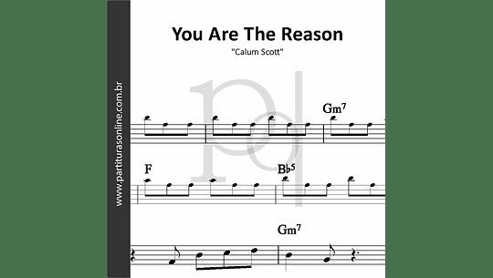 You Are The Reason   Calum Scott
