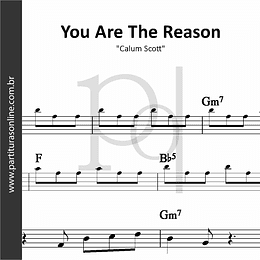 You Are The Reason | Calum Scott