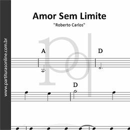 Amor Sem Limite | Roberto Carlos