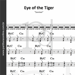 Eye of the Tiger | Survivor