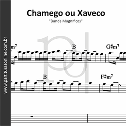 Chamego ou Xaveco | Banda Magníficos