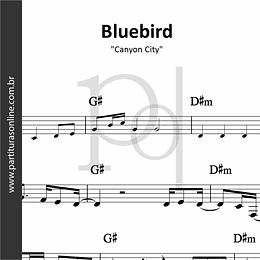 Bluebird   Canyon City