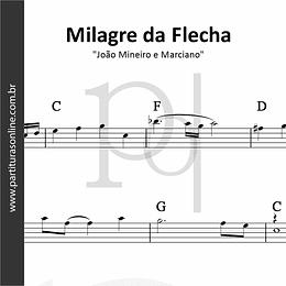 Milagre da Flecha   João Mineiro e Marciano