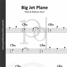 Big Jet Plane   Alok & Mathieu Koss