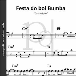Festa do boi Bumba   Carrapicho