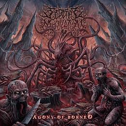 Sederai Mutilation - Agony Of Borneo CD