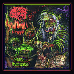 Acid Witch - Witchtanic Hellucinations CD Dig