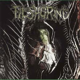 Fleshgrind - The Seeds Of Abysmal Torment CD