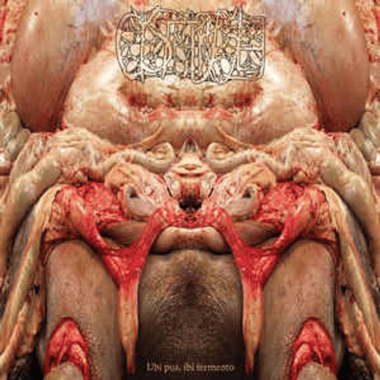 Cystgurgle – Ubi pus, Ibi Fermento CD