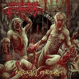 Bowel Stew - Necrocoital Amputorgy CD