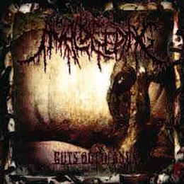Anal Bleeding – Guts Out Of Anus CD