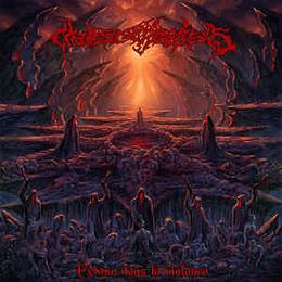 Chaos Catharsis – Extase Dans La Violence CD