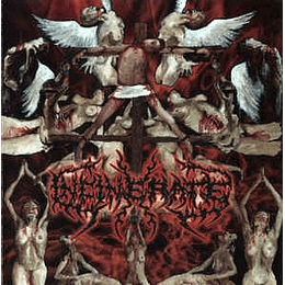 Incinerate – Dissecting The Angels CD