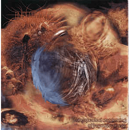 Intervalle Bizzare / Malignancy – Unexpected Awakening Of Impassive Mass / Fraility Of The Human Condition CD