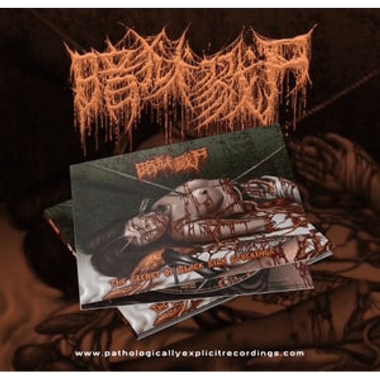 The Dark Prison Massacre – The Secret Of Black Silk Stockings CD,Dig 3